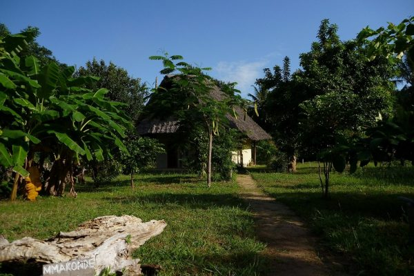 1.75 Acres In Kwale / Kinondo Near Neptune Beach Hotel